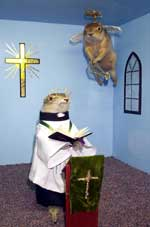 gopher reverend