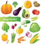 eggplant with vegetables poster