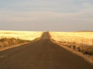 Remote road near Shaniko OR 1 130814