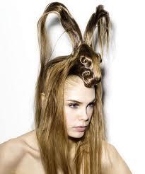 hair style rabbit