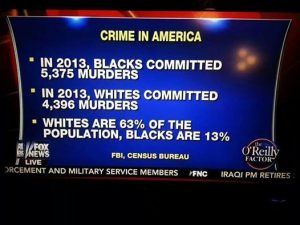 black-crime-statistics-fox-news-12614